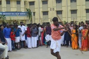 pongal_celebration_8